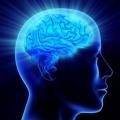 Як підвищити рівень інтелекту