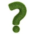 Як правильно заготовлювати гарбузове насіння для посадки?