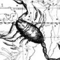 Чоловік скорпіон - вибір мазохістки