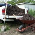 Особливості грунту, які потрібно враховувати в землеробстві