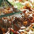 Роботи в саду восени