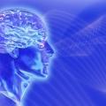 Як підвищити мозкову активність