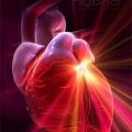 Як зміцнювати серцевий м`яз