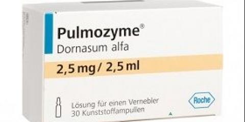 Пульмозім