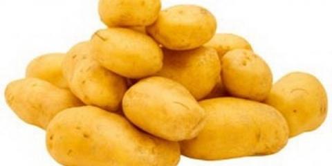 Сорт картоплі: аррова