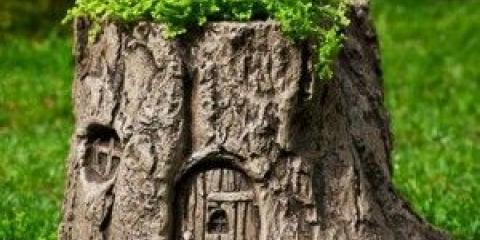 Друге життя старих дерев - технологія створення пня-клумби своїми руками